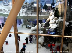 Ski Dubaï au Mall of The Emirates