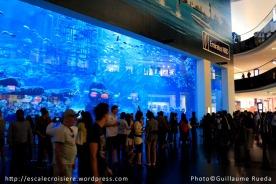Aquarium du Dubaï mall