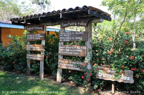 Puntarenas - Scarlet Macaw Sanctuary