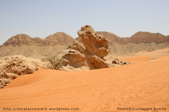 Fujairah 4x4 - Camel Rock