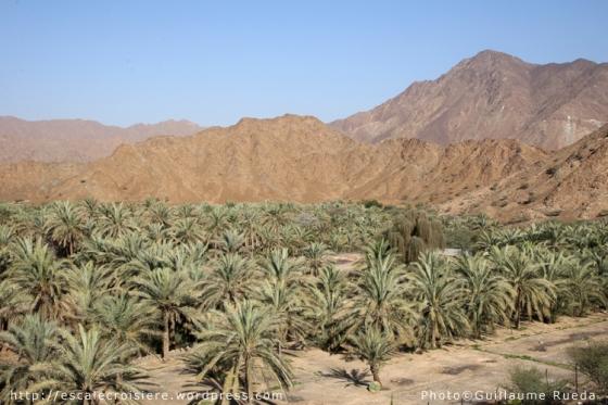 Fujairah - Al Badiya