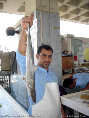 Fujairah - marché au poisson