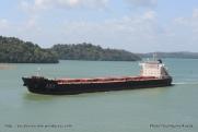 Canal de Panama - Lac Gatun