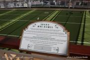 Queen Elizabeth - Games deck