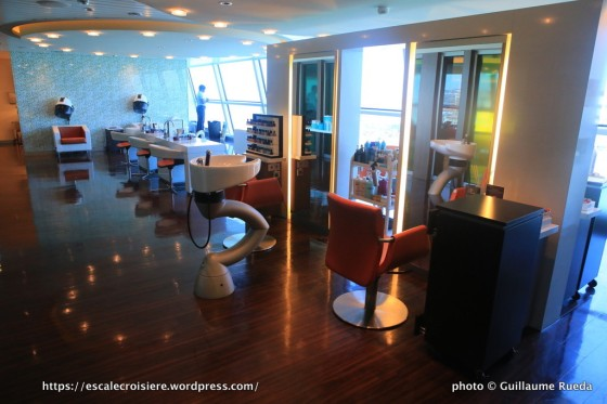 Celebrity Silhouette - Coiffeur
