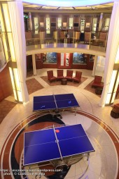 Celebrity Silhouette - Ping Pong
