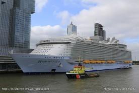 Harmony of the Seas - Rotterdam