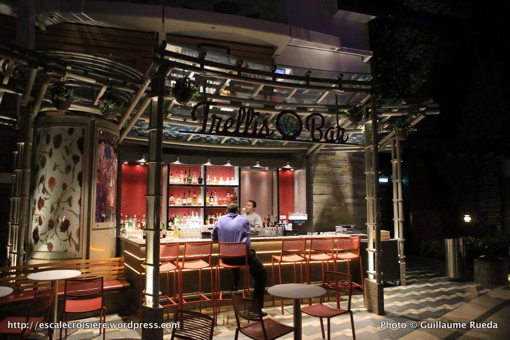 Harmony of the Seas - Trellis Bar