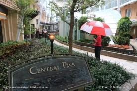 Harmony of the Seas - Central Park parapluie