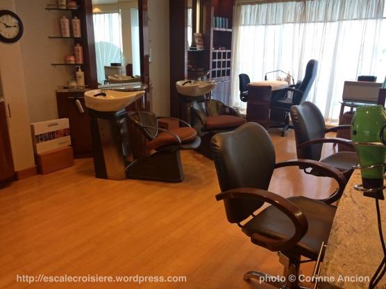 Seven Seas Navigator - Salon de coiffure
