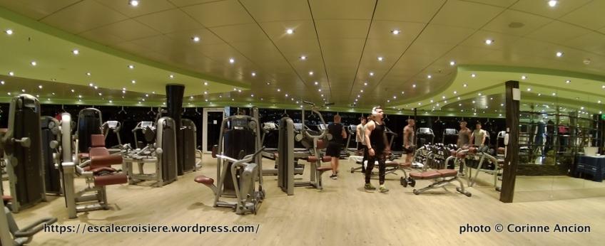 Msc Fantasia Salle De Sport Et Fitness Escale Croisiere