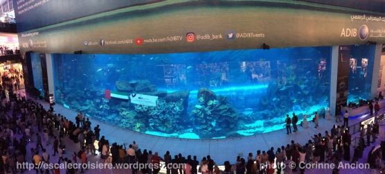 Escale à Dubaï - Emirats Arabes - Aquarium Dubaï Mall