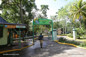 Ocho Rios - Jamaïque - Dunn's River Fall