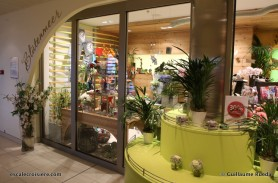 AIDAperla - Boutique - Fleuriste