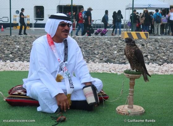 fauconnier - abu dhabi