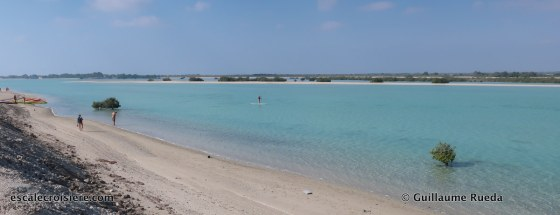 lagon sir bani yas