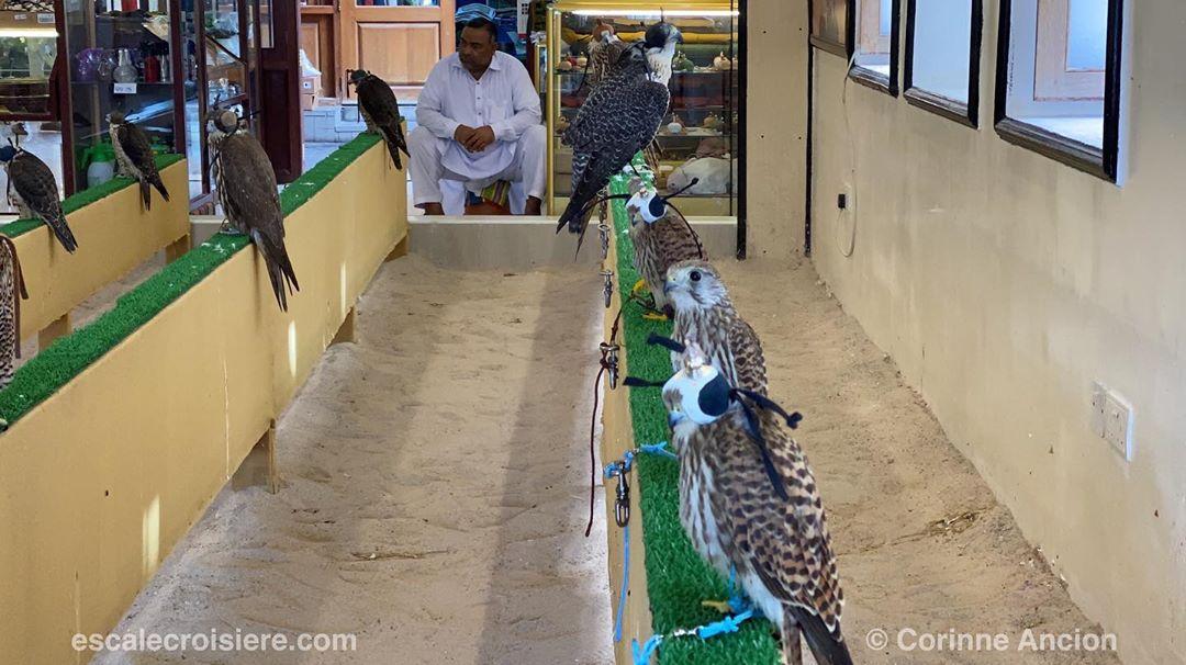 Souk Waqif - Doha - Qatar