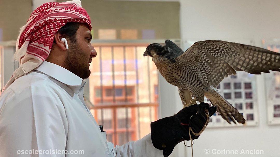 Doha - Qatar - Falcon hospital - Clinique faucons