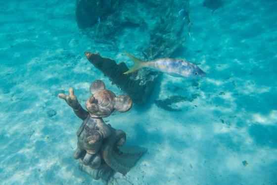 Plongée à Castaway Cay